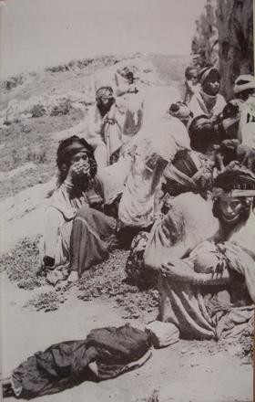 algiers governemtn