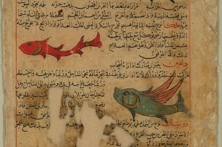 A dolphin and fish from 'The London Qazwīnī', courtesy of British Library and Qatar Foundation.