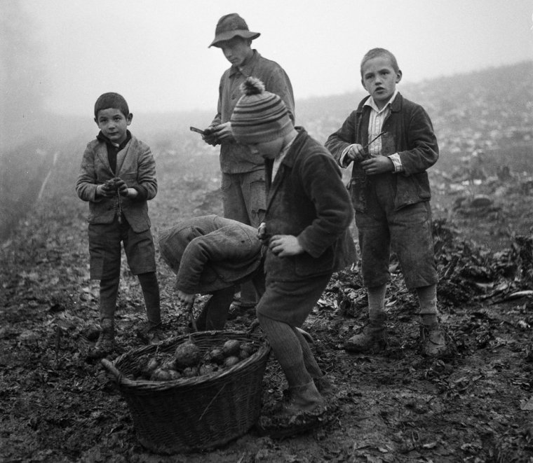 Swiss child labor